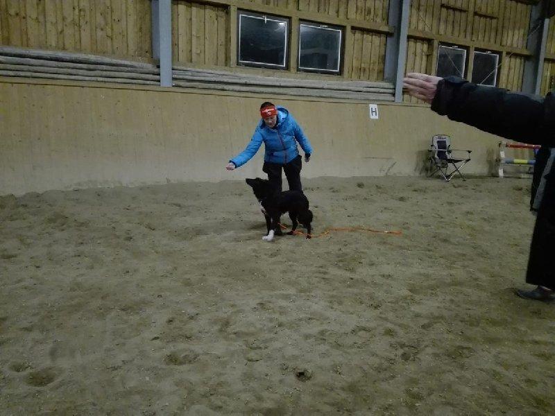 Testujeme za vás... aneb Výukový program ATA – Trenér psů I. stupeň POTŘETÍ