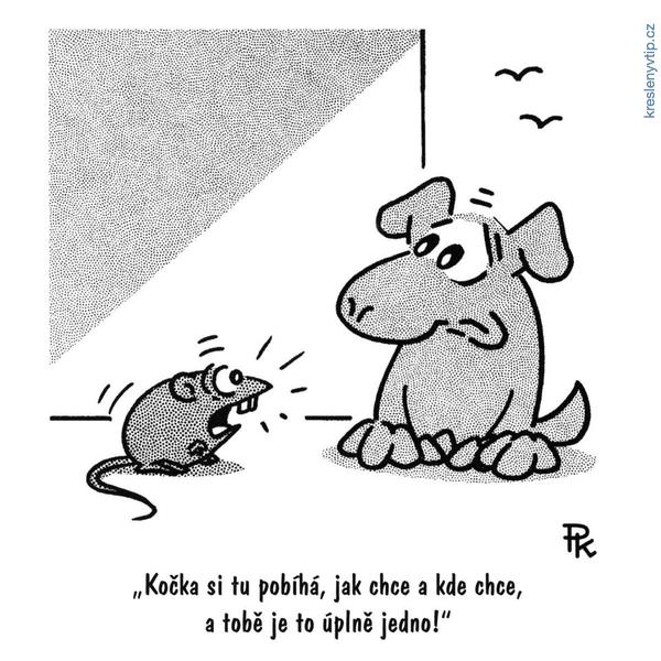 Být psem není snadné