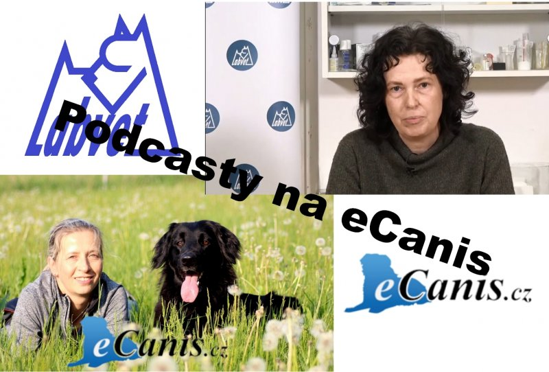 Podcasty na eCanis!