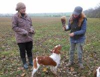 História lovu a ako si vybrať správneho poľovného psa ?