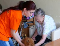 Canisterapie - praxe I.