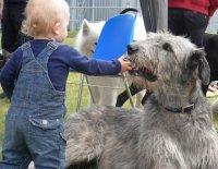 Socializace IV. neboli ten pes si přece už musí na lidi zvykat, no ne?!