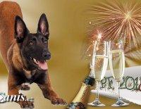 Šťastný Nový rok, naši milí čtenáři!!!