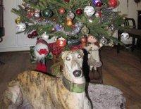 I Darinka oslavila Vánoce a Silvestra