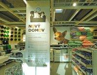 """Podpořme projekt """"Nový domov"""" pro psy a kočky!"""