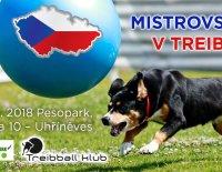 Treibballu se u nás daří – důkazem je letošní mistrovství!