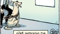 K očaři se psem