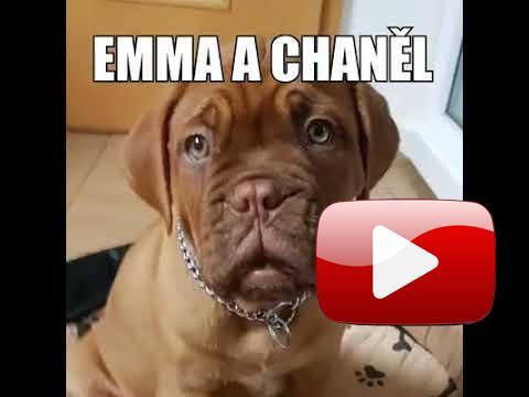 Emma a chaněl