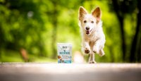 Se psem v dlouhých chvílích: Buďte spolu aktivně