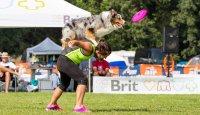 Freestylová pravidla v dogfrisbee – část 1
