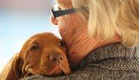 Co nám přináší soužití se psem? 5. díl