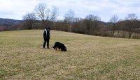 Stopařská poradna - Můj pes si vybírá pamlsky na stopě!