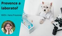 Prevence a laboratoř