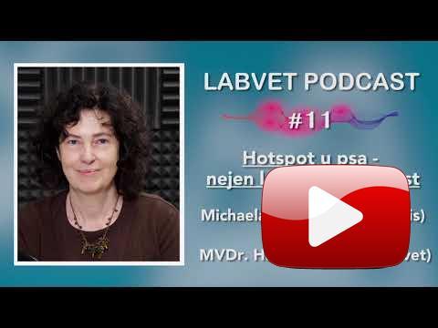 LABVET podcast, díl 11   Hotspoty