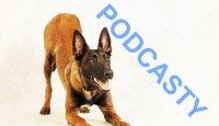 LABVET_podcast_ Jak se dělá obchod pro psy?
