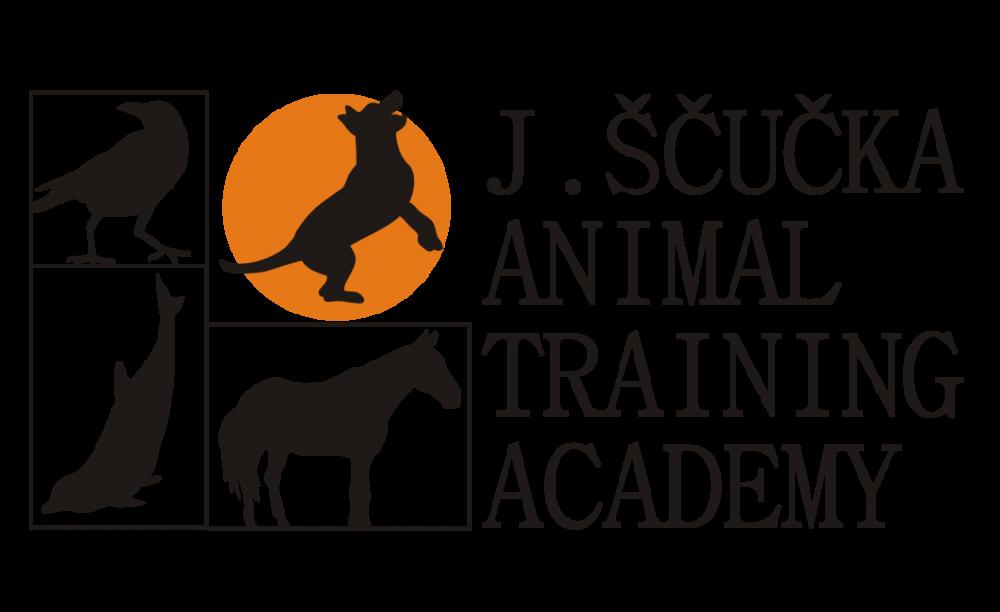 Elektronické výcvikové obojky a jejich místo v moderním tréninku psů  II. díl