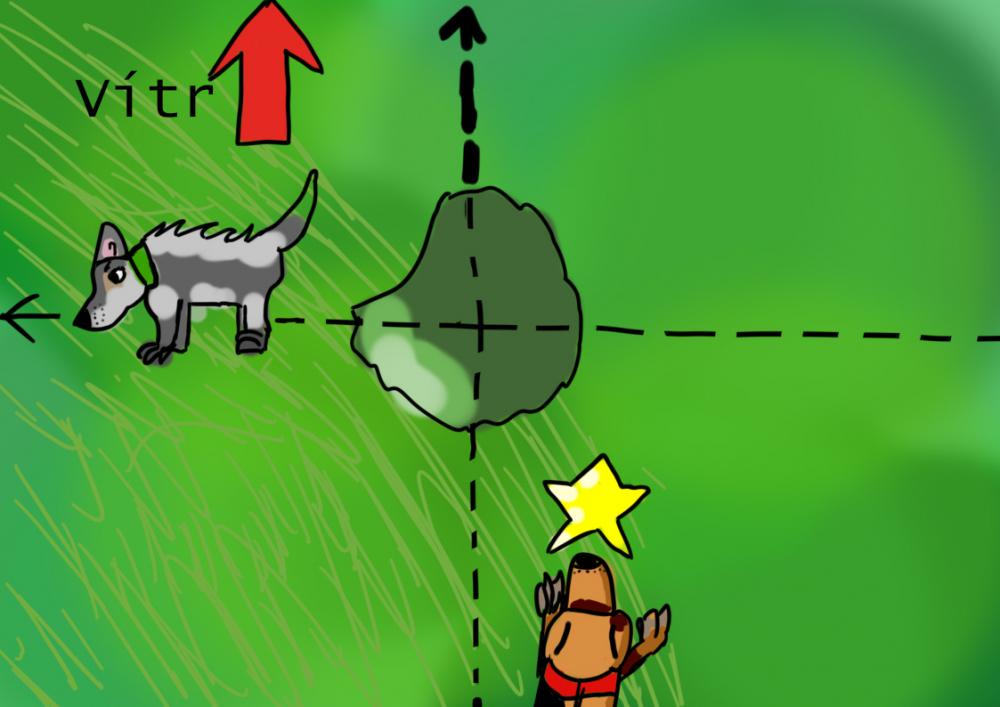 Střídání povrchů vmantrailingu 13. díl