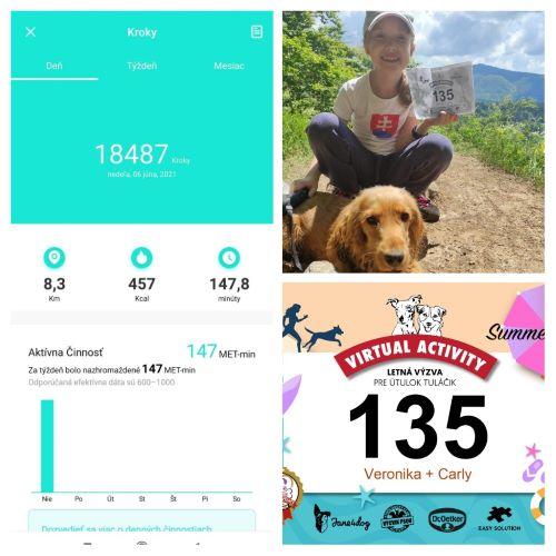 Virtual Activity – letná výzva na pomoc útulku Tuláčik