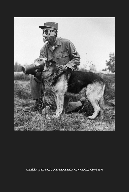Kde se vzal, tu se vzal německý ovčák? V. díl