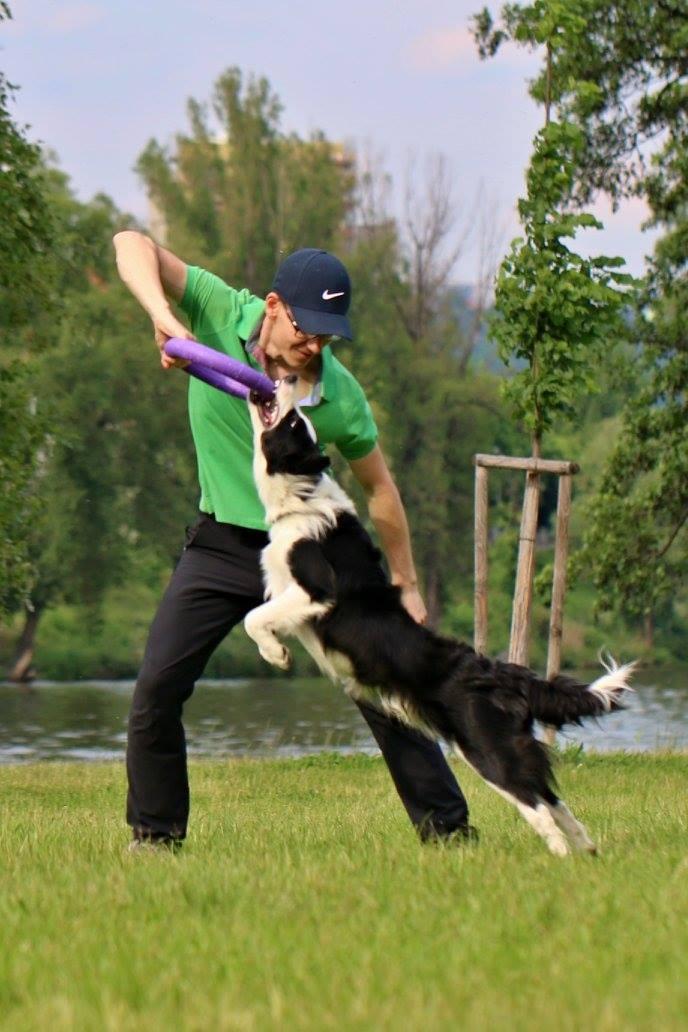Učím psy, že spolupráce s člověkem je ta nejlepší volba.