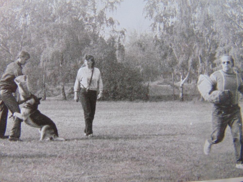 Historie kynologických sportů – léta padesátá II. díl