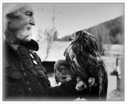Volně žijící živočichové, jejich ohrožení a pomoc záchranných stanic