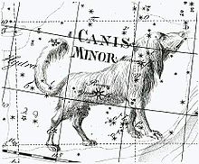 Psi ve hvězdách a mýtech...