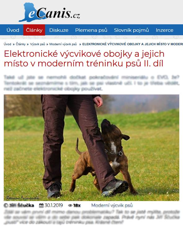 Elektronické výcvikové obojky a jejich místo v moderním tréninku psů I. díl