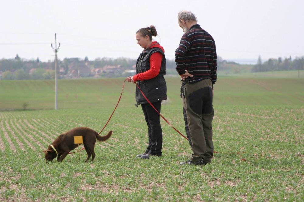 Pejskařina není jen o psech, ale zejména o lidech!