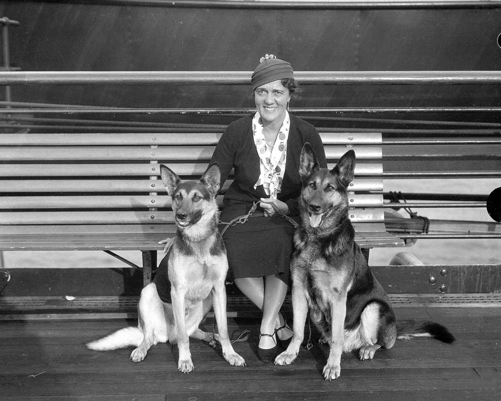 Zpátky do minulosti – vodící psi
