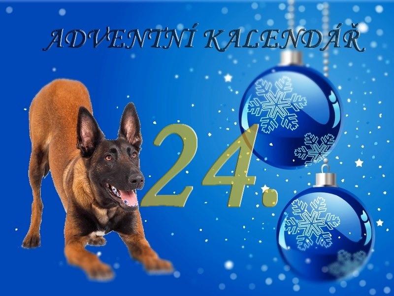 Adventní kalendář 2020, aneb Tak to tu ještě nebylo!!!