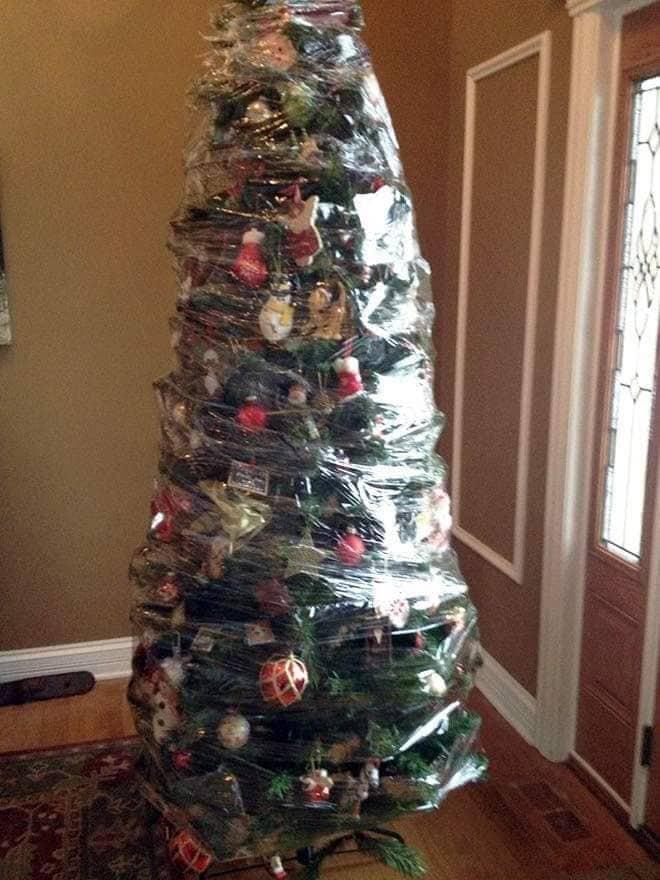 Co strom, to originál!