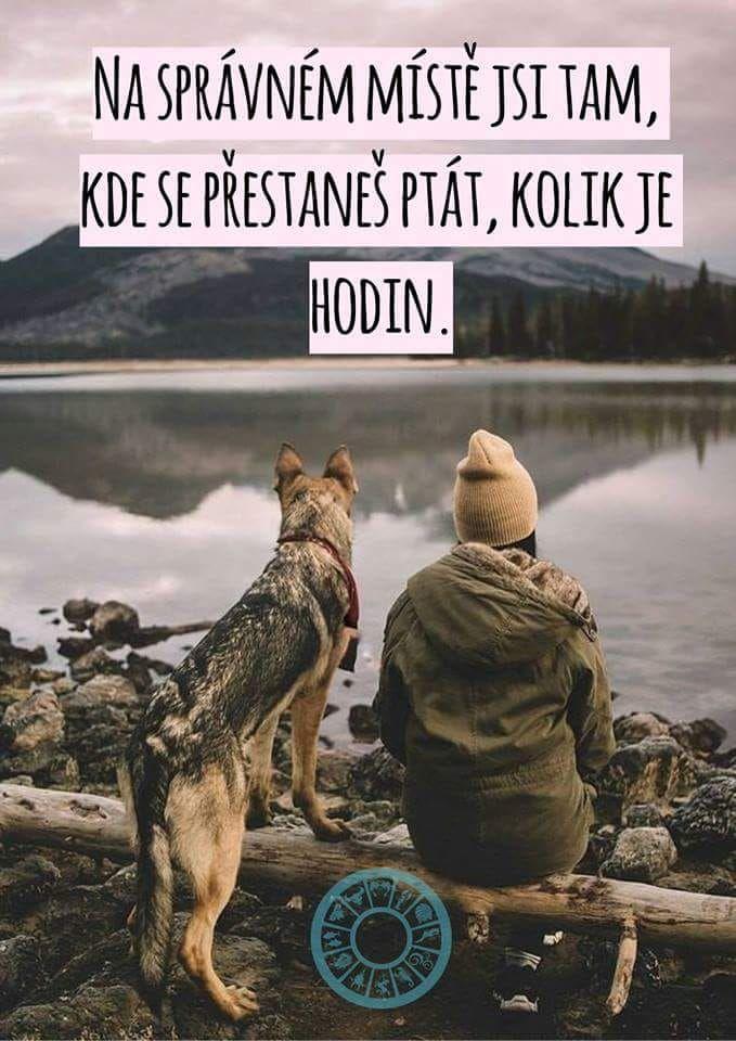 psí psycholog