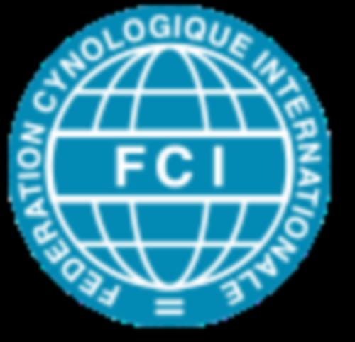 skupiny FCI