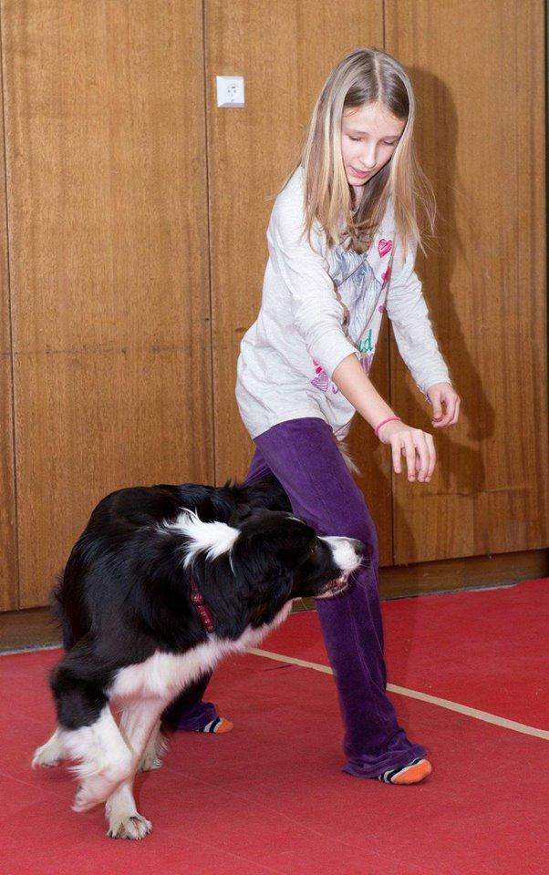 dogdancing